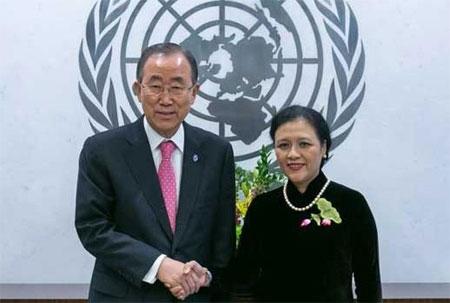 Năm lịch sử với Phái đoàn thường trực Liên tại hợp quốc