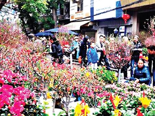 Cành hoa bích đào