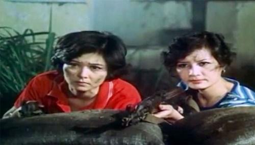 Tôi luôn cảm kích về sự hy sinh thầm lặng của các chiến sĩ Biệt động Sài Gòn