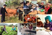 Thành tựu xóa đói, giảm nghèo tại Việt Nam