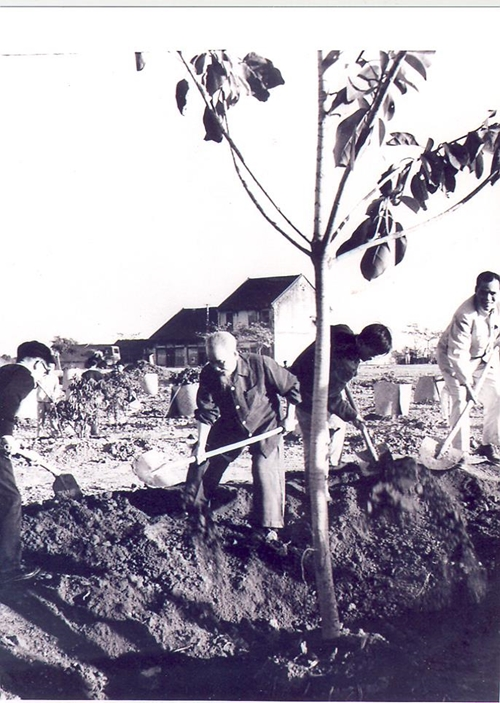 60 năm trước, Bác Hồ mở đầu Tết trồng cây