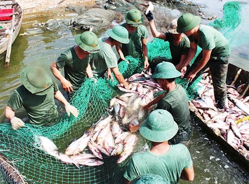 Hiệu quả mô hình nuôi trồng thủy sản ở cơ quan quân sự địa phương