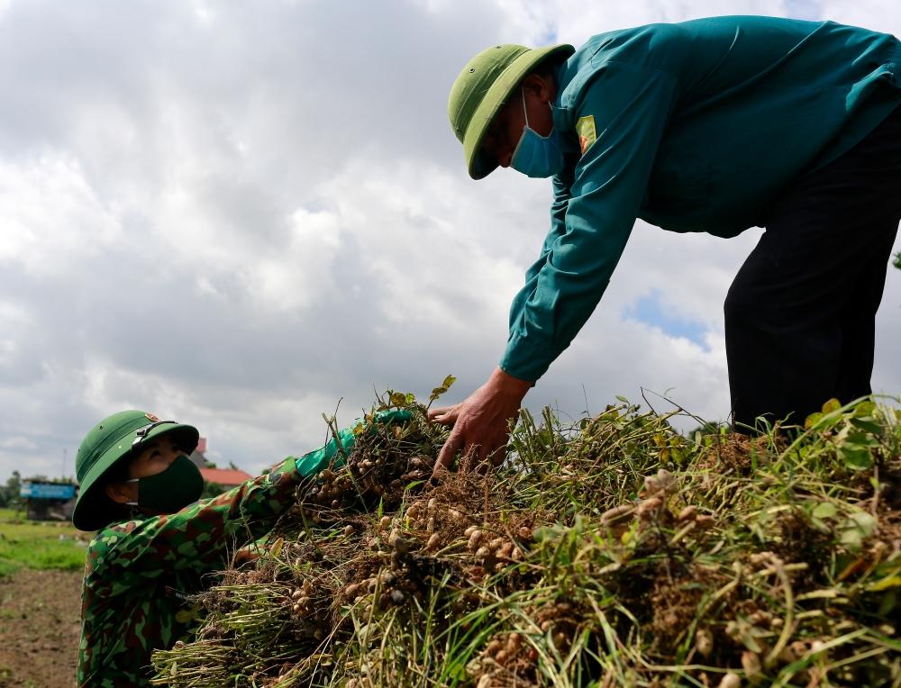 Sự giúp đỡ của các nữ quân nhân rất kịp thời khi nhiều gia đình không thể thu hoạch nông sản do quy định giãn cách và có người thuộc diện cách ly.