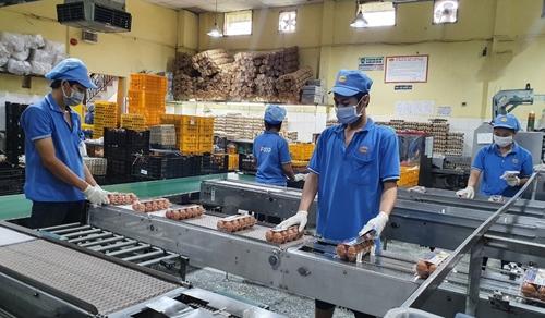 Tháo gỡ khó khăn, bảo vệ chuỗi sản xuất