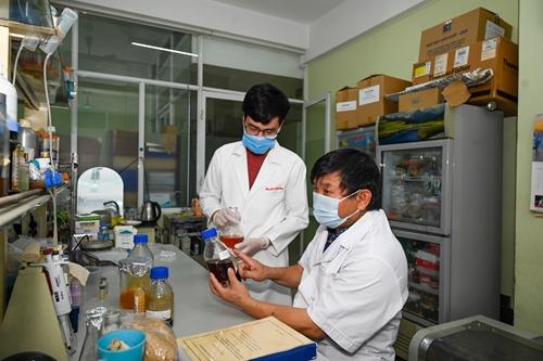 Khi nào thuốc điều trị Covid-19 của Việt Nam được đưa vào sử dụng?