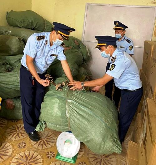 Lạng Sơn: Thu giữ 6 tạ nấm không rõ nguồn gốc, xuất xứ