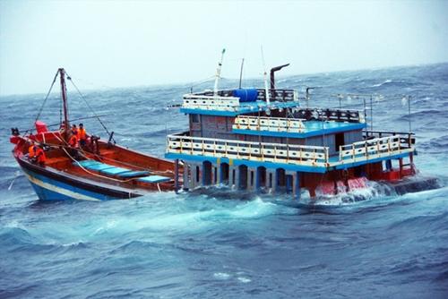 Vượt sóng cứu dân