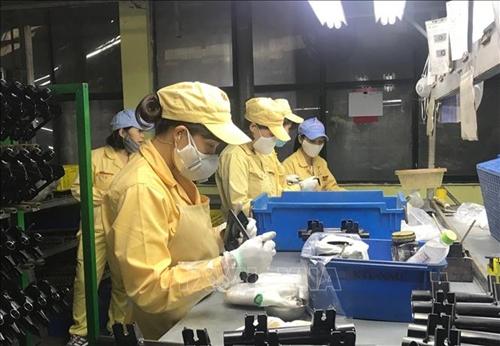 Người lao động Việt Nam làm việc cho tổ chức, cá nhân nước ngoài phải có trách nhiệm gì?