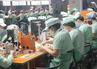 岘港各工业区吸引11个新投资项目