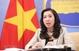 在黄沙群岛开展非法科学考察和科研活动是侵犯越南主权的行为