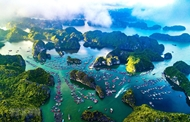 60%日本人欲赴越南旅游