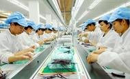 越南与瑞士投资经营促进会在日内瓦举行