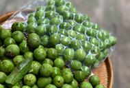 越南首批22吨人面果在澳大利亚上市