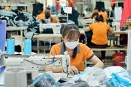 EVFTA生效一年后 越南与欧盟双向贸易迅猛增长