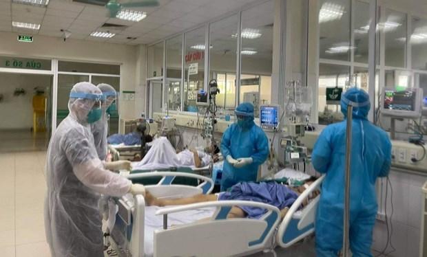 胡志明市全力以赴救治重症和危重症患者