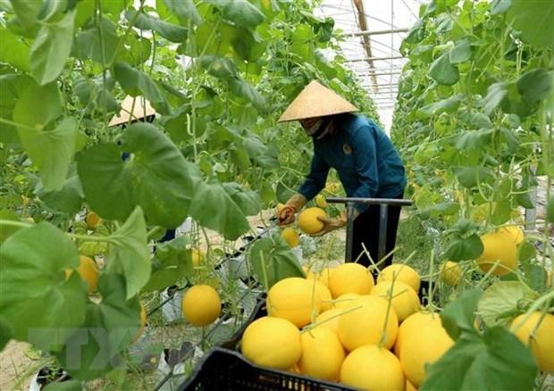 澳大利亚为越南农业发展提供支持
