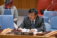 越南呼吁阿富汗遵守国际人道主义法