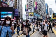 越南企业参与粤港澳大湾区市场的机会