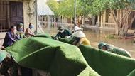 抓紧时间帮助人民进行灾后清理