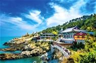Agoda揭示新冠肺炎大流行后越南的旅游趋势