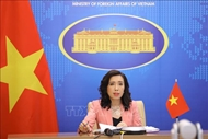 Vietnam requests concerned parties to respect Vietnam's sovereignty