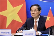 Foreign minister affirms Vietnam's commitments to Mekong - Ganga Cooperation