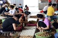 Policy dialogue promotes ASEAN women