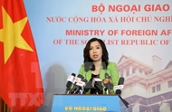 Vietnam resolutely protects sovereignty over Hoang Sa, Truong Sa archipelagoes
