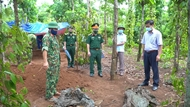 Fallen soldiers' remains collected in Quang Tri