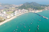 Marine protected area to be established in Quang Ninh province