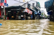Typhoon Dianmu wreaks havoc in many localities