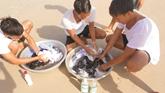 Xà phòng sinh học dùng trong điều kiện nước mặn